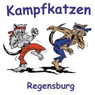 Regensburg Galaxy Gym