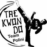 Carlsberg Team Polini